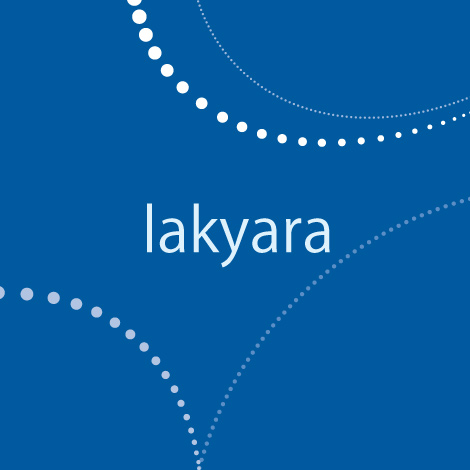 Capital Markets & IT -lakyara